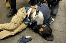 Port Authority blast Bangladesh suspect arrested: what we know