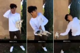 Why? Snapchat cat throwing video leads to Ontario, Cal teen arrest.