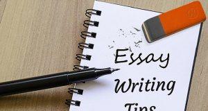 Great Essay writing