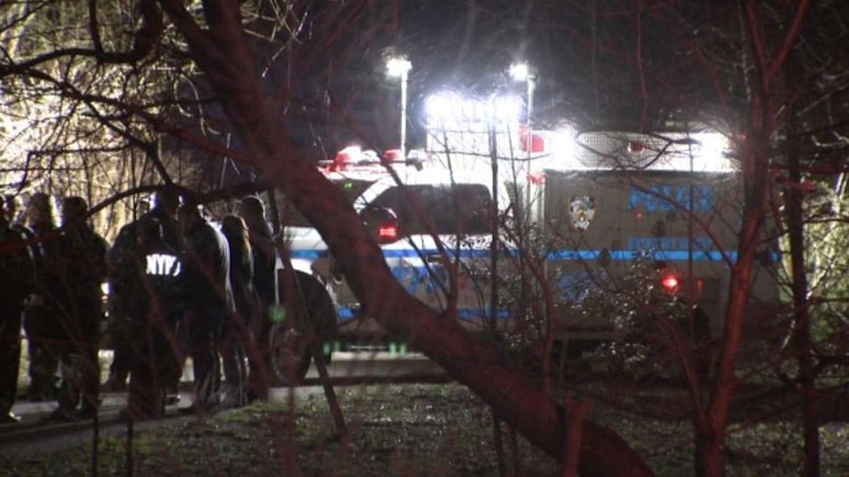 Canarsie Park woman's dismembered body found