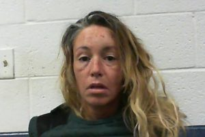 West Virginia woman decapitates boyfriend, pleads 'let me get my heads'.