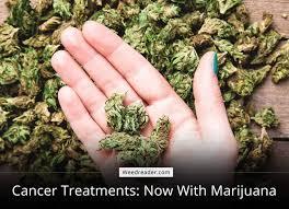 Treating Cancer with marijuana