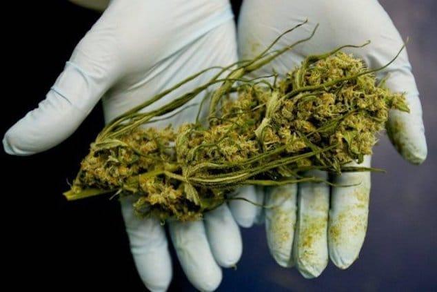 Treating Cancer with marijuana1