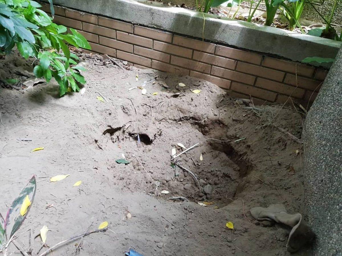 Taiwanese Tinder murder suicide: