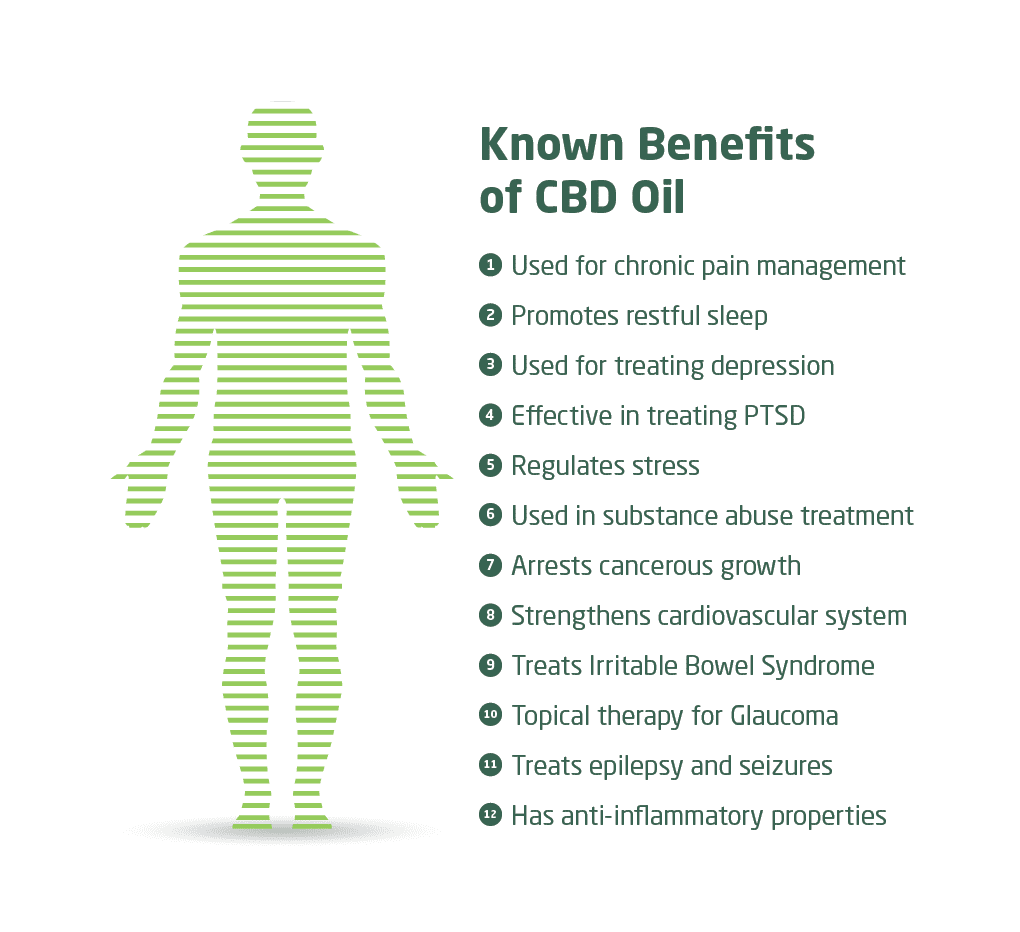 CBD Guide Weight Loss