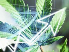 Marijuana Stock Investments
