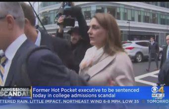 Michelle Janavs sentenced