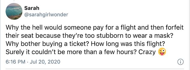 American Airlines Karen