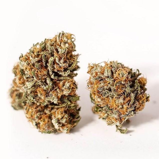 CBD strains of Hemp