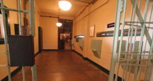 Dallas county jail inmate search