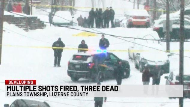 Plains Townshipmurder suicide