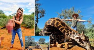 Merelize Van Der Merwe hunter giraffe heart