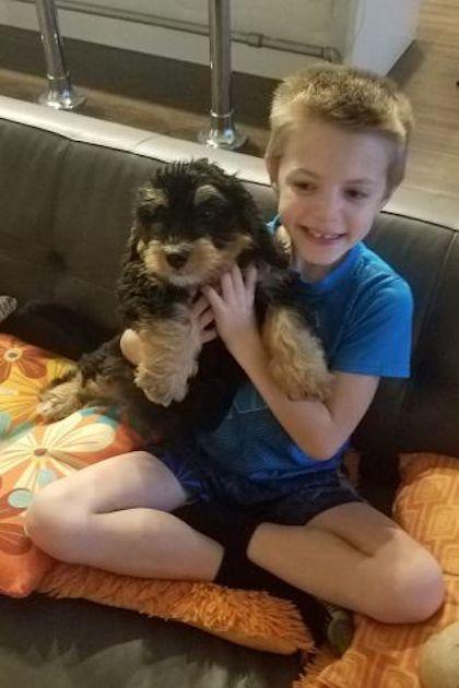 Jay Weiskopf Minnesota boy, 9, shark attack Miami Beach