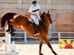 True Equestrian Dress