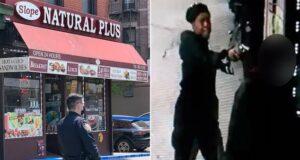 Nichelle Thomas Park Slope Brooklyn shot dead