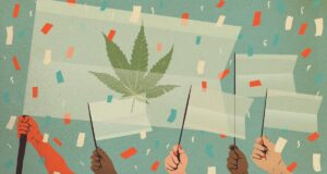 Changing attitudes towards weed