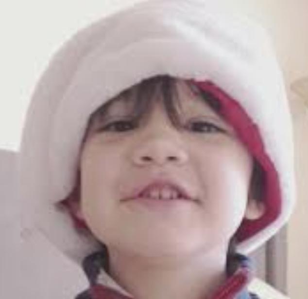 Aiden Leos Ca road rage shooting six year old boy killed