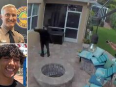 Trooper George Smyrnios tases Jack Rodeman Florida teen