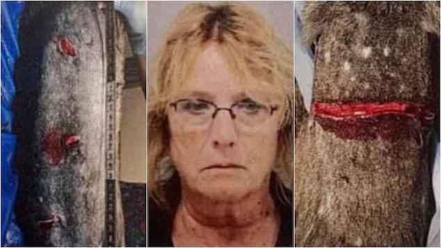 Pauline Waldron dog animal cruelty