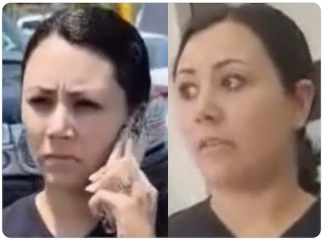 Liz de la Torres Kaiser aka Walmart Karen