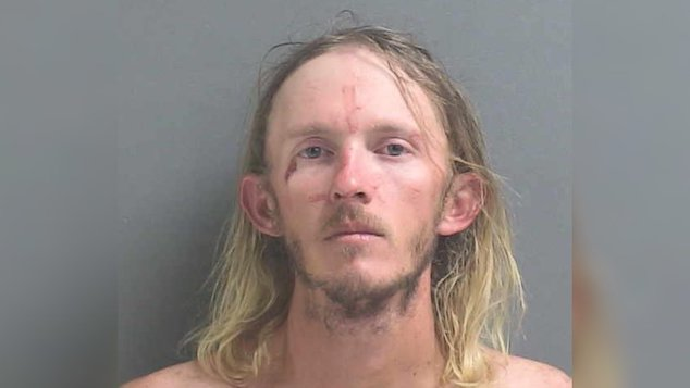 Florida man stomps stolen alligator