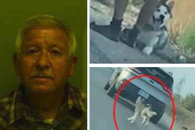 Luis Antonio Campos El Paso Tx man abandons husky dog