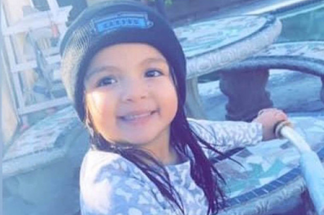 Harbor City 4 year old girl killed in hit and run crash