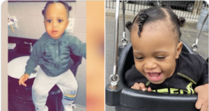19 month old Brooklyn boy mauled to death by family dog.