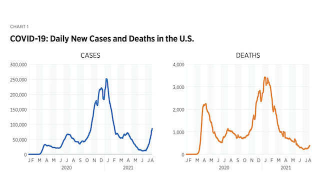 New COVID-19 cases and deaths in the US Delta variant.