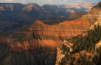 Grand Canyon suicide