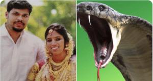 Sooraj Kumar snake