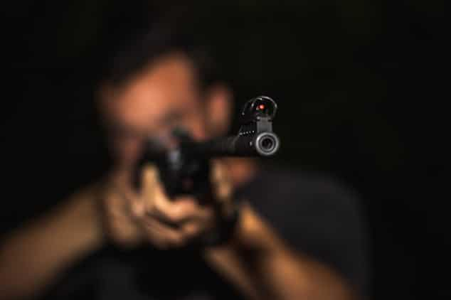 gun control accuracy